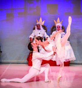 Académie Méditerranéenne de Danse